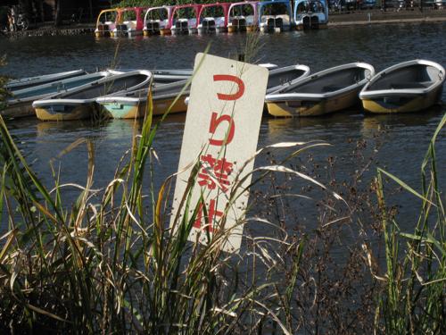 08年11月1日の石神井公園 ボート池 つり禁止の札